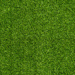 Seamless Artificial Grass Field Texture — 图库照片