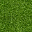 Стоковое фото: Seamless Artificial Grass Field Texture