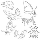 Set of insects on a white background. — Stock Photo