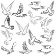 Stock Photo: Set of white vector doves.