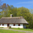 Village house in forest environment, old-fashion Ukrainian hut — Foto de Stock