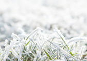 Frosty background with copy space — Photo