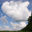 Summer land sky horizon — Stock Photo