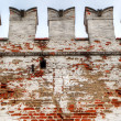 The wall of Novodevichy convent in Moscow - Stock Photo