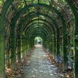 Stock Photo: Trellis arches in Arkhangelskoe estate