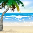 The beautiful beaches - Stock Vector
