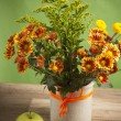 Summer flowers bouquet in a vase, close-up — Stock Photo #10716858