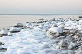 Costa do mar Báltico no inverno — Fotografia Stock