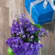 Spring bouquet campanula blue and gift box, a close up — Stock Photo #9468116