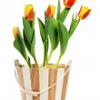 It is red yellow tulips in a bucket, it is isolated on white — Stock Photo #9569832