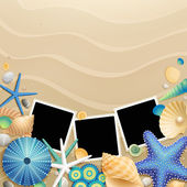 Pictures, shells and starfishes on sand — Stock Vector