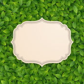 Vintage card on green leaves texture. — Stock Vector