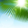 Palm leaf on blue sky and sun beams - Stock Vector