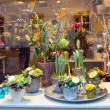 Stock Photo: Showcase floral shop. Den Bosch, Netherlands