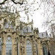 Cathedral in Den Bosch. Netherlands — Stock Photo