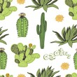Stock Vector: Cactus pattern