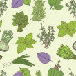 Herbs seamless pattern — Stock vektor
