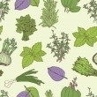 Herbs seamless pattern — Stockvectorbeeld