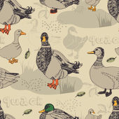 Duck background — Stockvektor