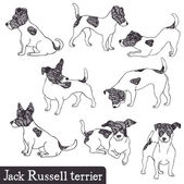 Jack Russell Terrier set — Stock Vector
