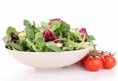 Isolated fresh salad — Stock Photo