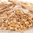 Oat flakes — Stock Photo #10386626