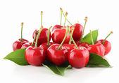 Isolerade cherry — Stockfoto