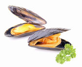 Isolated mussel and parsley — Stock Photo
