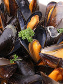 Close up on mussel and parsley — Stock Photo