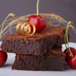 Brownies — Stock Photo