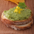 Bread with guacamole - Stock Photo