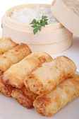 Fried spring roll and rice — Stock Photo