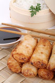 Fried vegetables spring roll — Stock Photo