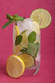 Fresh mojito cocktail — Stock Photo