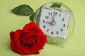 Budzik i róża — Zdjęcie stockowe