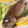 Grilled trout on plate - Stock Photo
