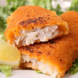 Fried fish and salad — Stock Photo #9486352