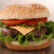 Hamburger — Stock Photo #9578192