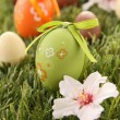 Painted colorful easter egg on green grass — Stock Photo