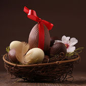 Easter nest and egg — Stock Photo