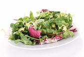 Isolated plate of salad — Stock Photo