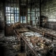 Abandoned factory workshop — Stock Photo