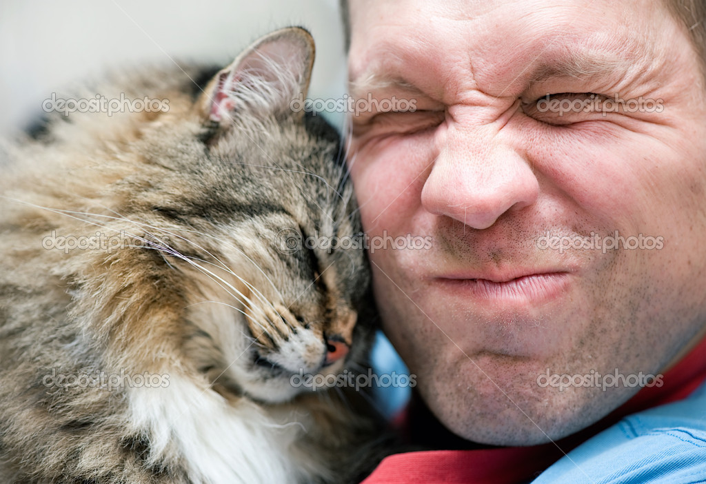 Striped cat care with man — Stock Photo #10063344
