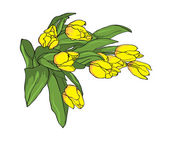 Vektor gula tulpaner — Stockvektor