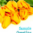 Bunch of yellow tulips — Stock Photo