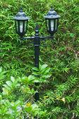 Iluminación en el jardín — Foto de Stock