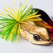 Foto de Stock  : Fishing lures