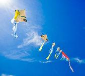 Colorful of kites — Stock Photo
