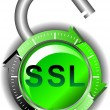 SSL - Security — Stock Vector