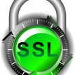 SSL - Security — Stock Vector #9238344